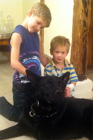 Are Children Safe with Protection Dogs - K9 Protector Securing Your Family fromThreat